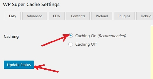 WP Super Cache Plugin Settings