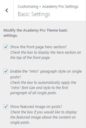 StudioPress Academy Pro Theme review