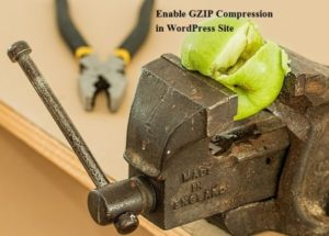 How to Enable GZIP Compression in WordPress Site
