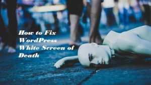 How to Fix WordPress White Screen of Death